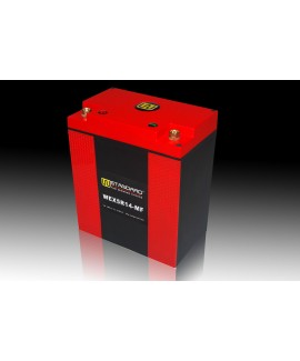 06-W-STANDARD Motorcycle lithium battery WEX5R14-MF Start the power supply 14Ah