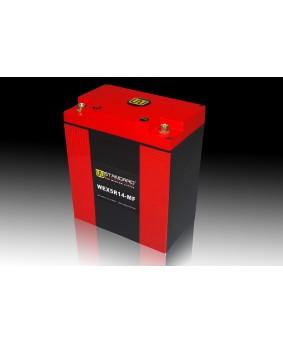 06-W-STANDARD摩托车锂电池WEX5R14-MF启动电源14Ah